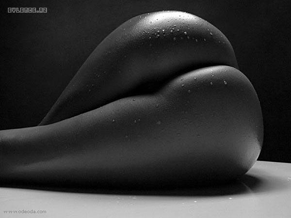 красивые женские попки чёрно белое фото