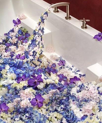 Фото цветов в ванне