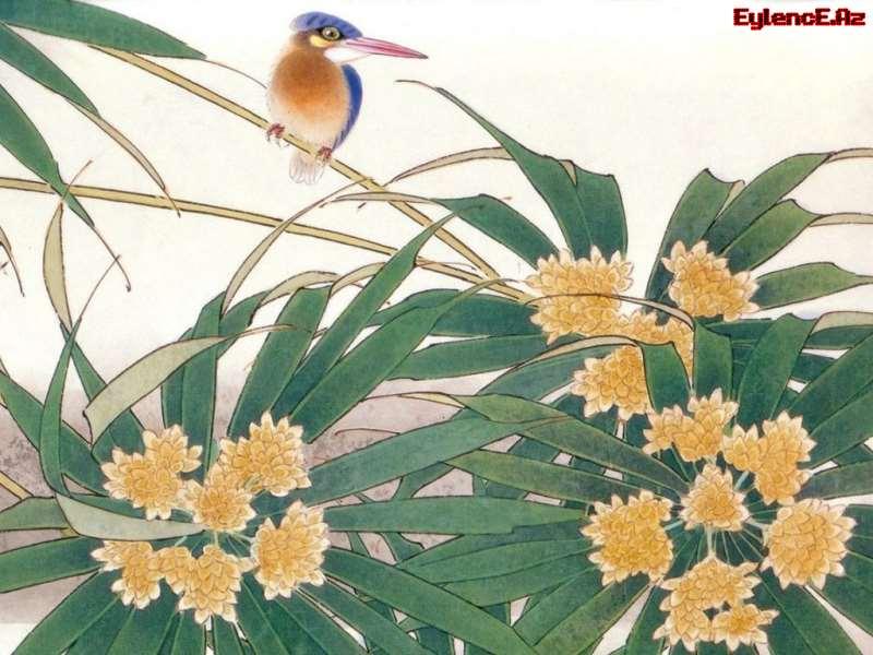 Şərq Akvarelləri