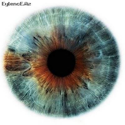 Göz Rəngləri
